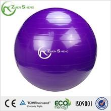 Zhensheng Customized Yoga exercise ball with logo
