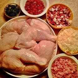 chicken; turkey; freash meats
