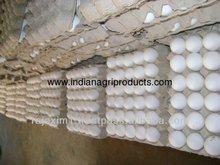 Huevos frescos proveedores