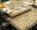 Novo projeto da casa, telha cerâmica do assoalho, telha da porcelana