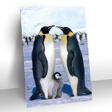 Cheap 3d picture of walking baby penguin with frame decoration