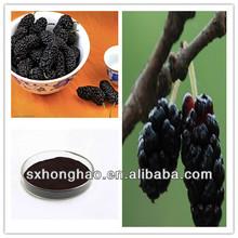 100% Natural Fine Dark Purple Powder Morus Alba L