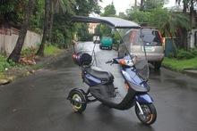 3-wheel electric bikes
