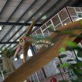 مغامرة موضوع ديناصور لمتنزه