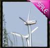 60KW China Wind Generator Wind Power Generator for Italy
