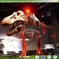 Dinosaurier-fossil replikat für Verkauf für fossilen Display