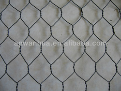 chicken wire mesh/hexagonal wire netting( iso 9001)