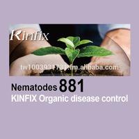 KINFIX bio organic nematicide - Nematodes 881 organic nematicide