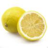 China foam lemon manufacturder / Fake fruits model for display / Yiwu factory