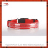 Luxury new flash fashion led pet collar