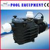 Submersible Swimming Pool Pump Strainer Motor