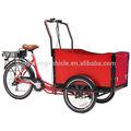 eléctrico de la familia de carga triciclos de personas con discapacidad