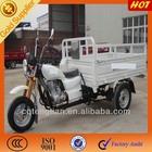 China 300CC 3 Wheel Motor Trike