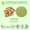 High Quality Peanut Extract 98% Luteolin