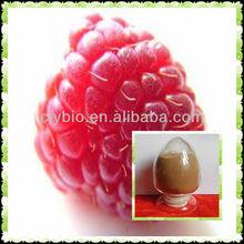 Rubus chingii Hu p.e.