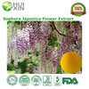 Hot Selling Product Best Sophora Japonica Flower Extract, Free Samples
