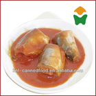 mackerel pike in tomato sauce 155gX50tins