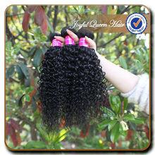 Wholesale princess Hair Products malaysian Virgin Hair tight curly