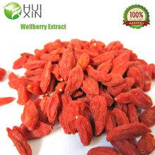Free Sample Goji Berry Powder, Dried Goji Berry Extract, Chinese Wolfberry Extract