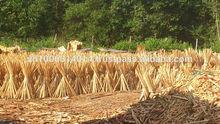 Plain Wood Handle Natural No Treating, Natural Wooden Broom Handles, Natural Wood Pole/s (contact@kego.com.vn)
