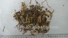 Dried Solanum nigrum,Solani nigri,Black nightshade,Duscle,Petty morel,Wonder berry,Popolo,Long kui,Longkui