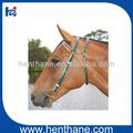 horse bridon western horse bridon avec peu boucle
