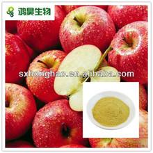 100% natural Apple Fruit Powder