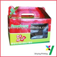 Ecofriendly Popular Fruit Packaging Box