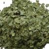hot fan shi liu ye herbs guava leaf extract powder