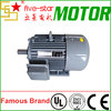 IE2 Efficiency 3 Phase Induction Motor
