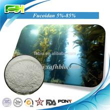 Natural Seaweed Extract Fucoidan 85%