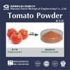 popilar natural high quality pure Tomato juice powder