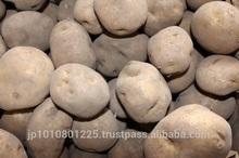 Baron Potato