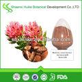 de alta calidad salidroside 1 5 extracto de rhodiola rosea por hplc