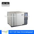 Cromatografía de gas de alto rendimiento