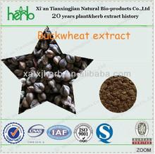 buckwheat seed extract /tartary buckwheat extract