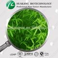 planta de folhas de bambu seco pó fabricante de hunan