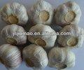 la nueva cosecha chino fresco normal ajo para la venta