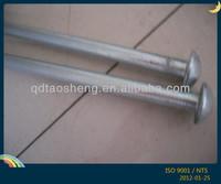 galvanized ground stake/tent stake
