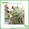 venta al por mayor de flores artificiales de plástico f