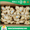 2014 fresh dried ginger/fresh ginger for wholesale/bulk fresh ginger
