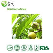 Top Quality 100% Ursolic acid 98%/Loquat Leaf extract