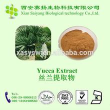Yellowish Powder Saponins /Yucca Schidigera Extract Supplier