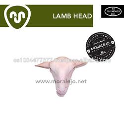HEAD LAMB