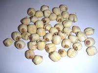 Dried Lotus Seed