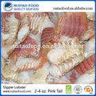 Frozen Slipper Lobster