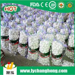 Garlic price in china 2014