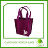 Rational construction non woven wine tote bag