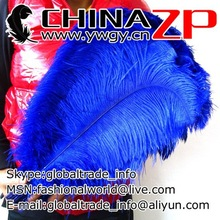 Trade Assurance Gold Supplier Selected Prime Quality Size from 18inch to 20inch Cheap Dyed Navy Blue Ostrich Feather for Sale