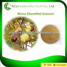 2014 High quality Herb medicine Horse Chestnut P.E aescin escin